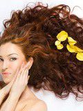 Useful Tips For Caring For Your Hair